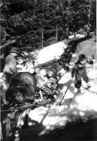 Holzliefern um 1955